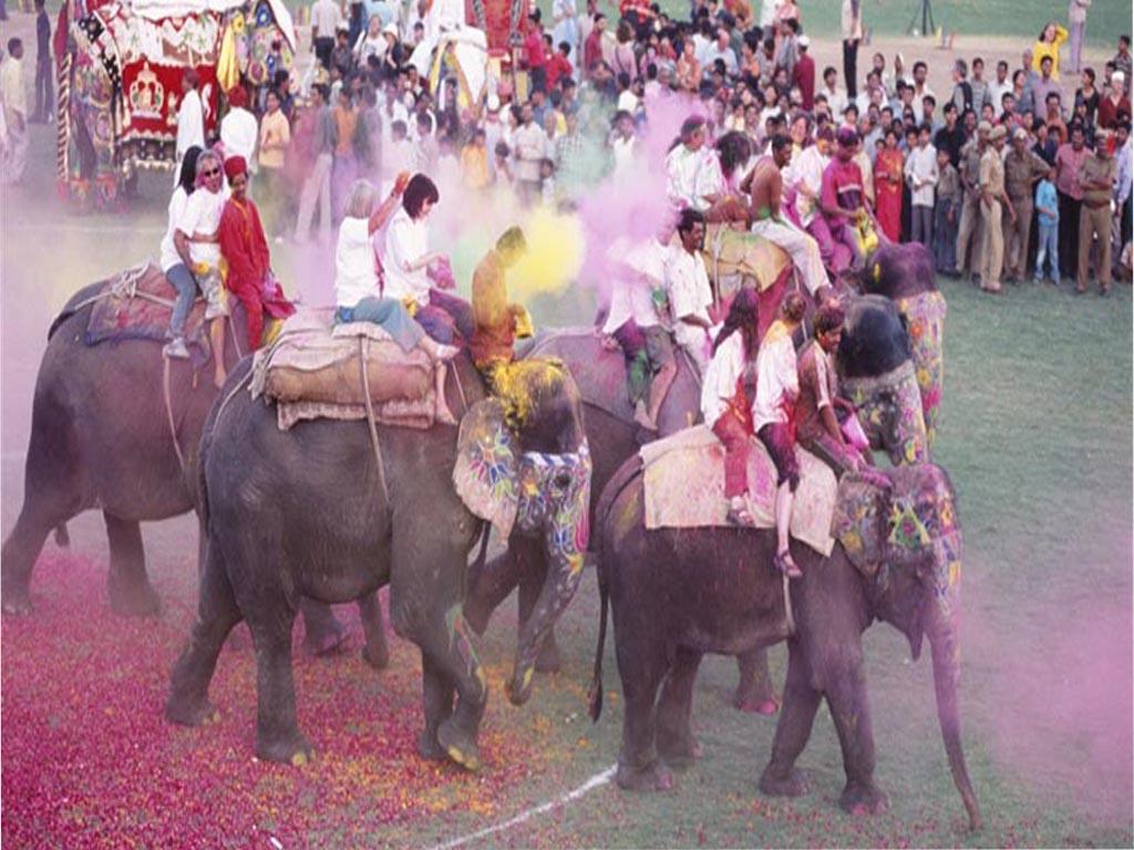 << Holi >> festival de couleurs