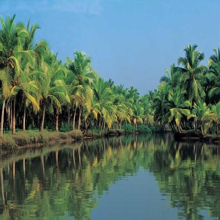 Escapade au Kerala et Karnataka