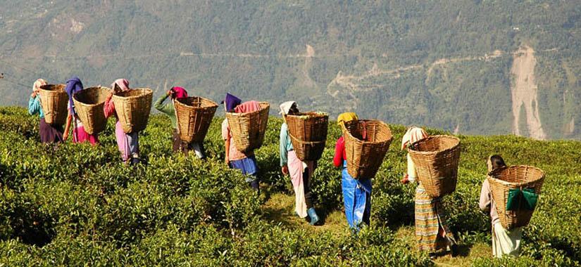 Sikkim et Bhutan